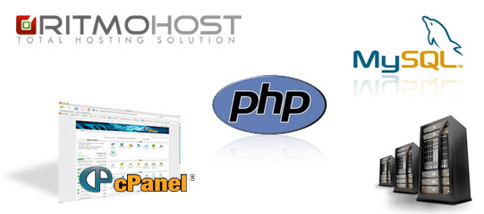 Linux VPS Hosting by Ritmo Host
